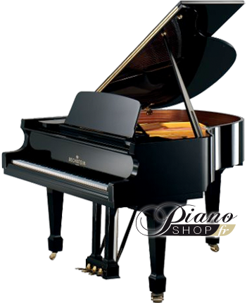 bechstein b a190nl pianos a queue fiche technique. Black Bedroom Furniture Sets. Home Design Ideas